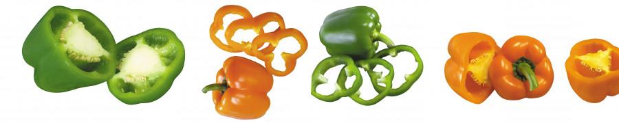 vegetables-091