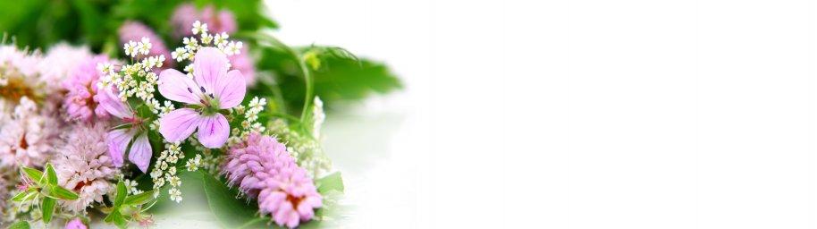 flowering-trees-037