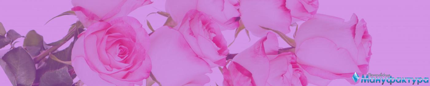 roses-050