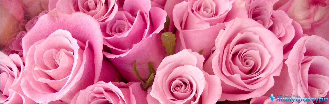roses-012