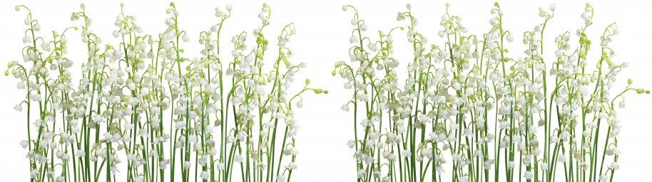 wildflowers-027