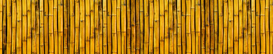 bamboo-plants-048