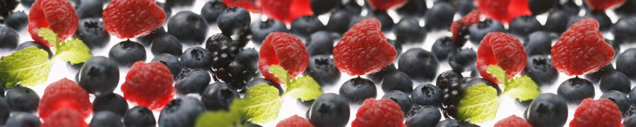 fruit-050