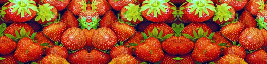 fruit-136