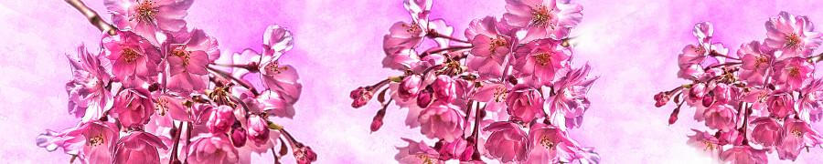 flowering-trees-071