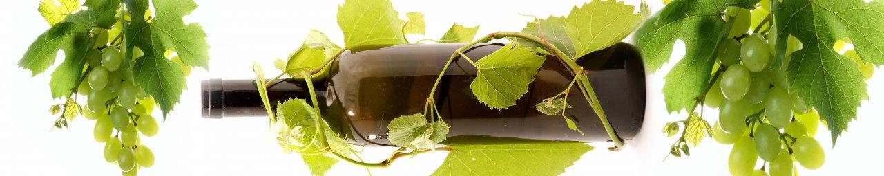wine-033