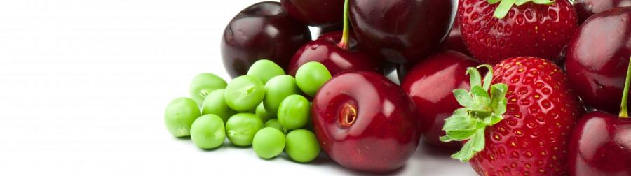 fruit-004