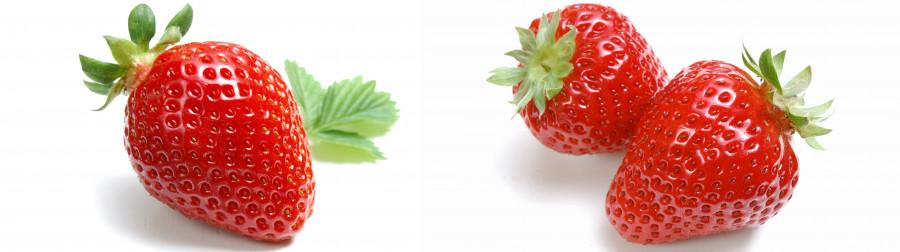 fruit-034