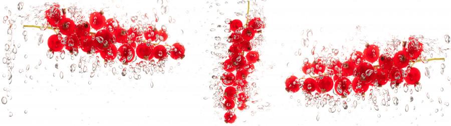fruit-water-040
