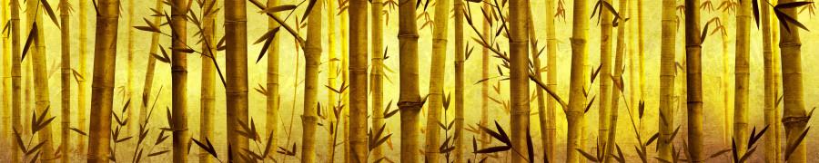 bamboo-plants-039