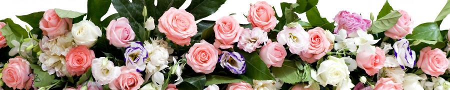 roses-049