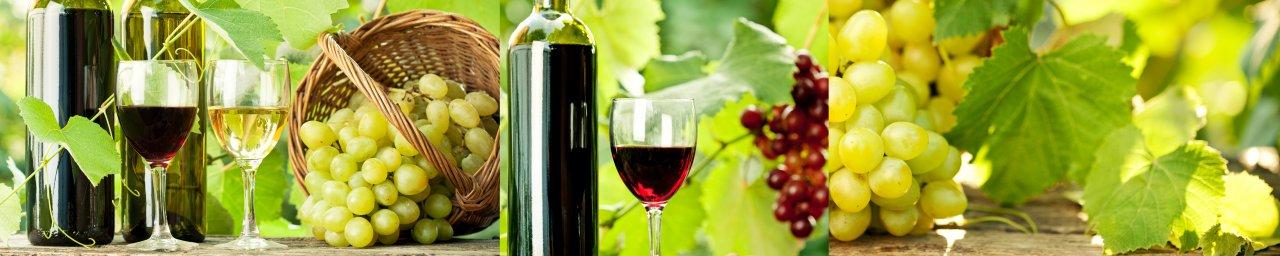wine-016