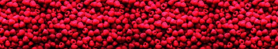 fruit-120
