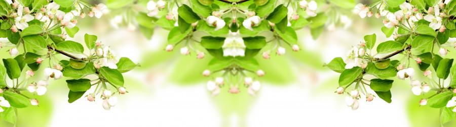 flowering-trees-032