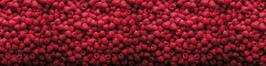 fruit-130