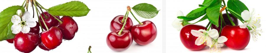 fruit-059