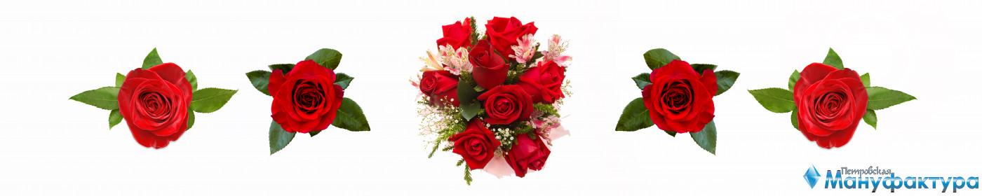 roses-037