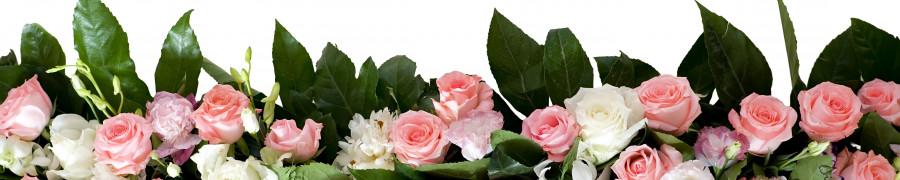 roses-048