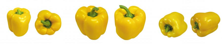 vegetables-036