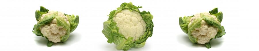 vegetables-118