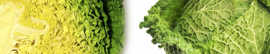 vegetables-121