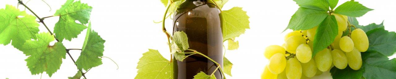 wine-032