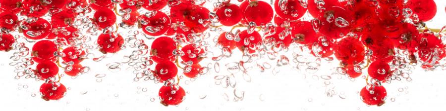 fruit-water-070