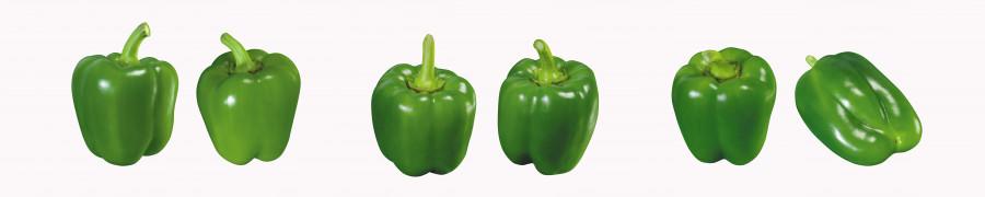 vegetables-087
