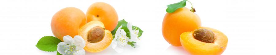 fruit-168