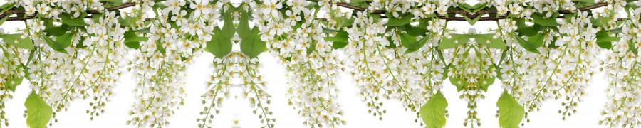 flowering-trees-048